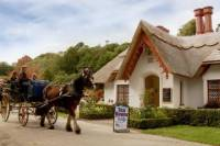 Jaunting Car Tour to Ross Castle from Killarney