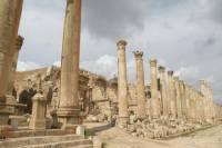 Jerash Half Day Tour from Dead Sea