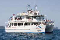Jervis Bay Day Trip from Sydney Including Dolphin Watching Cruise