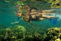 Kayak and Snorkel Tour from Flamingo Beach