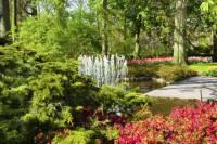 Keukenhof Gardens Day Trip from Amsterdam Including Guided Flower Fields Visit