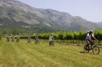 Konavle Valley Bike Tour and Wine Tasting from Cavtat
