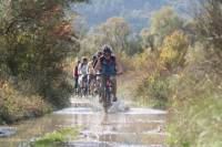 Konavle Valley Small-Group Bike Tour from Dubrovnik