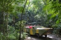 Kuranda Highlights including Rainforestation Aboriginal Culture and Wildlife