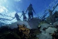 La Jolla Kayak and Snorkel Tour