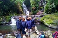 Lamington National Park Hiking Tour from the Gold Coast: Picnic Rock or Tooloona Creek