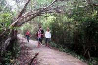 Lan Ha Bay and Viet Hai Village Trekking And Kayaking Day Trip from Cat Ba Island