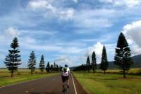 Lanai Full Day Bike Tour And Ferry With Lunch