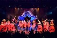 Lido de Paris Dinner Show with Champagne and Hotel Transfer