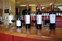 Luján de Cuyo Wine-Tasting Tour from Mendoza