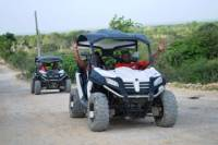Macao Beach Buggy Adventure from Punta Cana