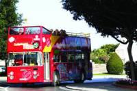 Malta City Hop-on Hop-off Tour