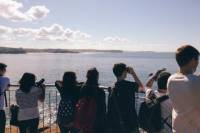 Manly and North Head Guided Coastal Walk