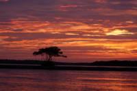 Marco Island Sunset or Moonlight Kayak Tour