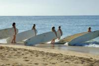 Maui Surf School Surfing Lessons
