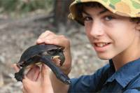 Melbourne Wetlands Turtle Expedition with Local Scientist