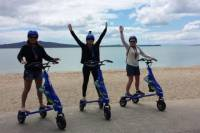 Mission Bay Electric Trikke Tour in Auckland