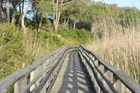 Molentargius Natural Park Segway Tour