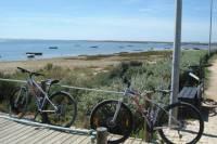 Moncarapacho - Tavira mountain and hybrid bike tour