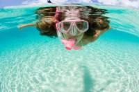 Moorea Snorkeling Safari
