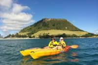 Mount Maunganui Kayaking Adventure