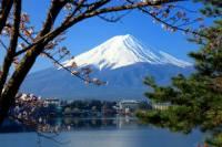Mt Fuji Day Trip including Lake Ashi Sightseeing Cruise from Tokyo