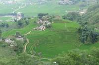 Muong Hoa Valley Half-Day Bike Tour from Sapa
