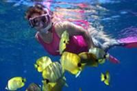 Na Pali Kauai Snorkel Expedition