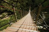 Nantou Walking On Sky Ladder Day Tour from Taipei