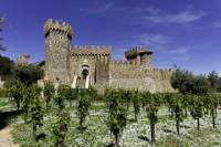 Napa Valley Wine Trolley and Castle Tour