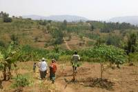 Nature Walk in Gitarama