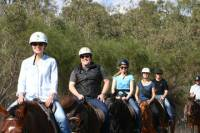Neergabby Horse Riding River Adventure