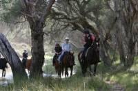 Neergabby Horse Riding Tour
