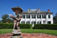 New Orleans Shore Excursion: Post-Cruise Westbank Plantation Tour