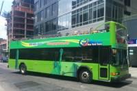 New York City Downtown Hop-On Hop-Off Bus Tour