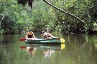 Noosa Everglades Canoe Trip with Barbecue Lunch