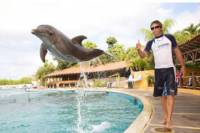 Nuevo Vallarta Dolphin Trainer for a Day