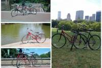 NYC's Central Park Bike Rental