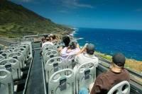 Oahu South Shore Double-Decker Bus Tour with Sea Life Park Admission
