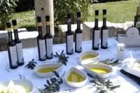 Olive Oil and Wine Tastings in Split