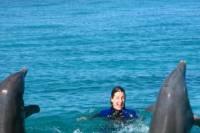 Open Ocean Dolphin Swim in Freeport