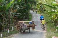 Oudong's Country Trails Bike Tour from Phnom Penh