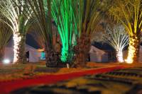 Overnight Family Desert Camp Experience from Abu Dhabi Including Dune Bashing and BBQ Dinner