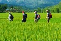 Overnight Mai Chau Pu Luong Trekking Tour