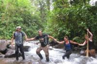 Overnight Tour: The Big Forest Hike Adventure