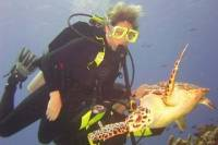 PADI Certification in Cozumel: 3-Day Open-Water Diving Course