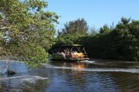 Pantanal Carioca Sightseeing Boat Tour in Rio de Janeiro