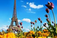 Paris Day Trip from London with Wine Tasting or Visit to Versailles