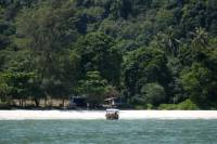 Penang National Park Half-Day Trek