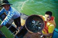 Phuoc Tich and Tam Giang Eco Tour from Hue